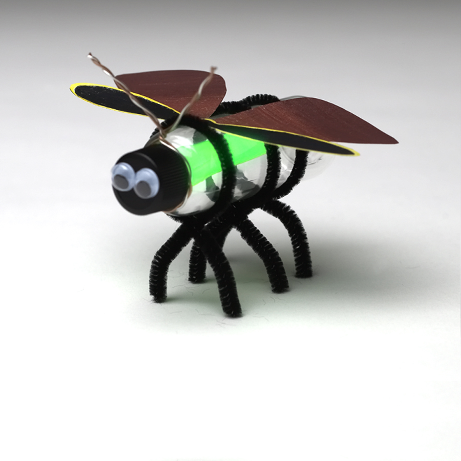 Insect Craft Projects & Activities For Teaching Kids About ...