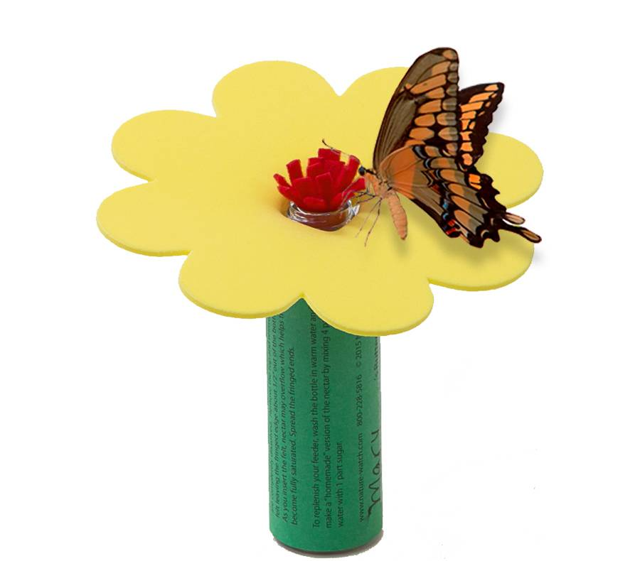 Butterfly Feeder Activity Kit