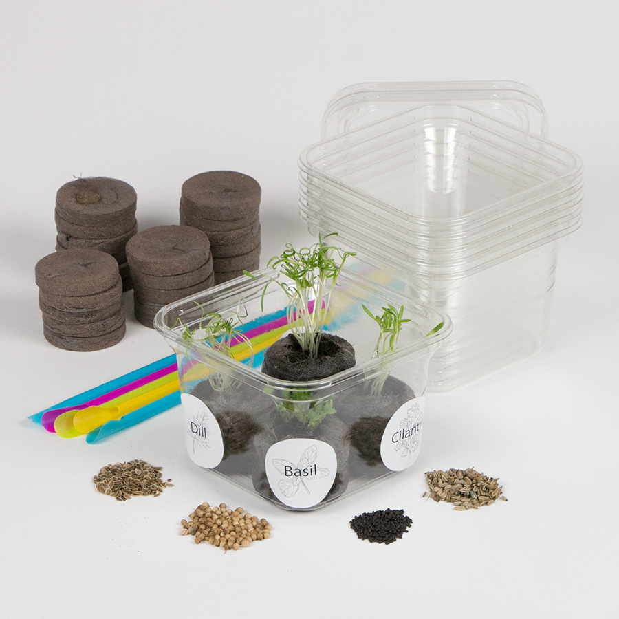 Herb Garden Greenhouse Activity Kit