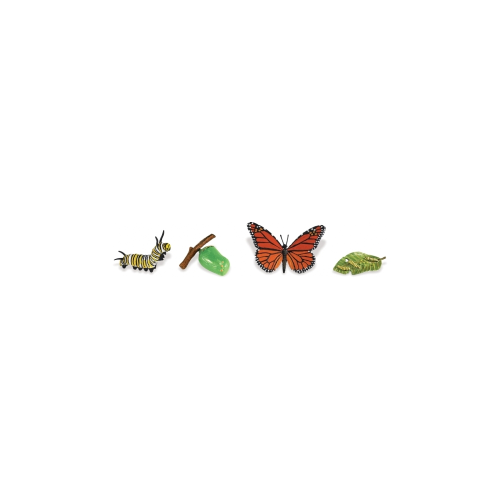 Monarch Butterfly Life Cycle Stage Figures: Butterfly Life
