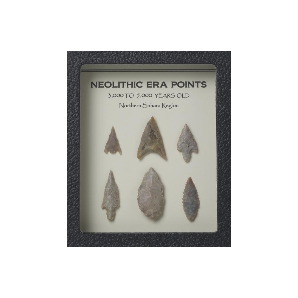 Neolithic Points Display