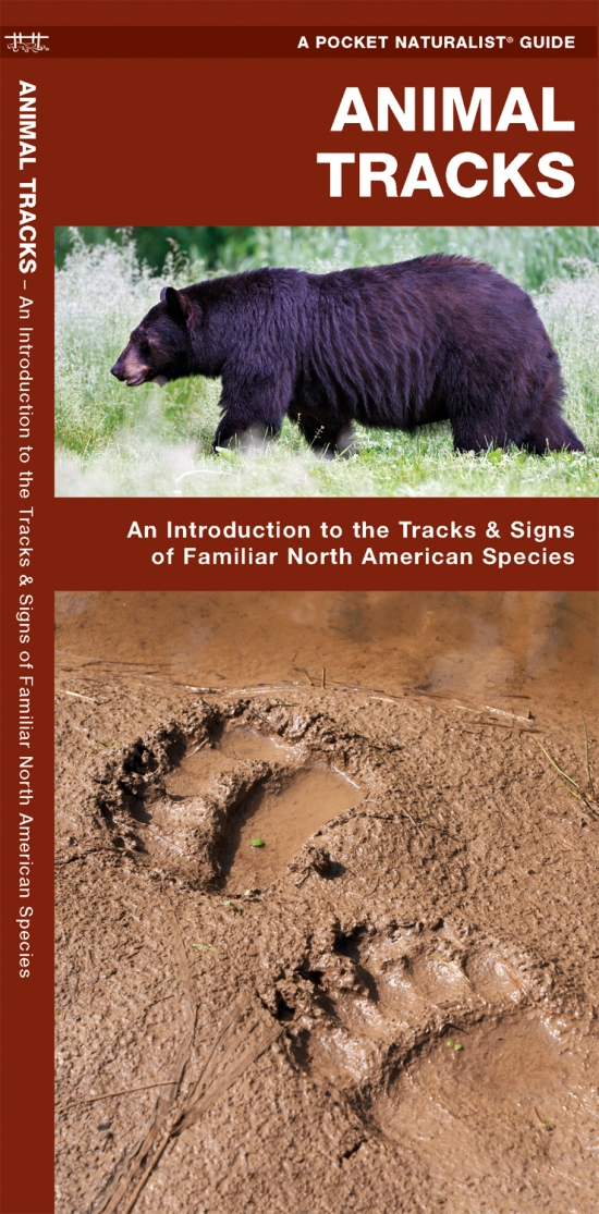 [PDF] Peterson Field Guide to Animal Tracks: Third Edition ...
