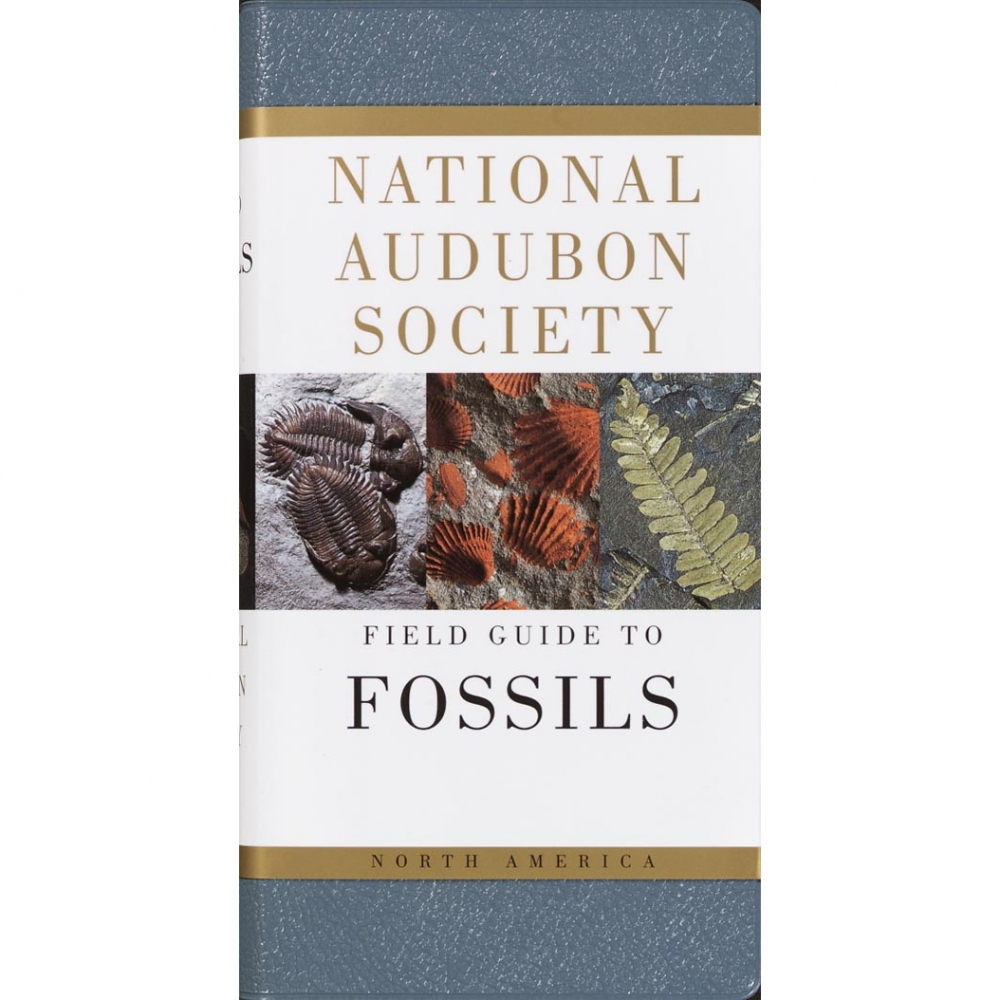Fossils National Audubon Society Field Guide Guide To