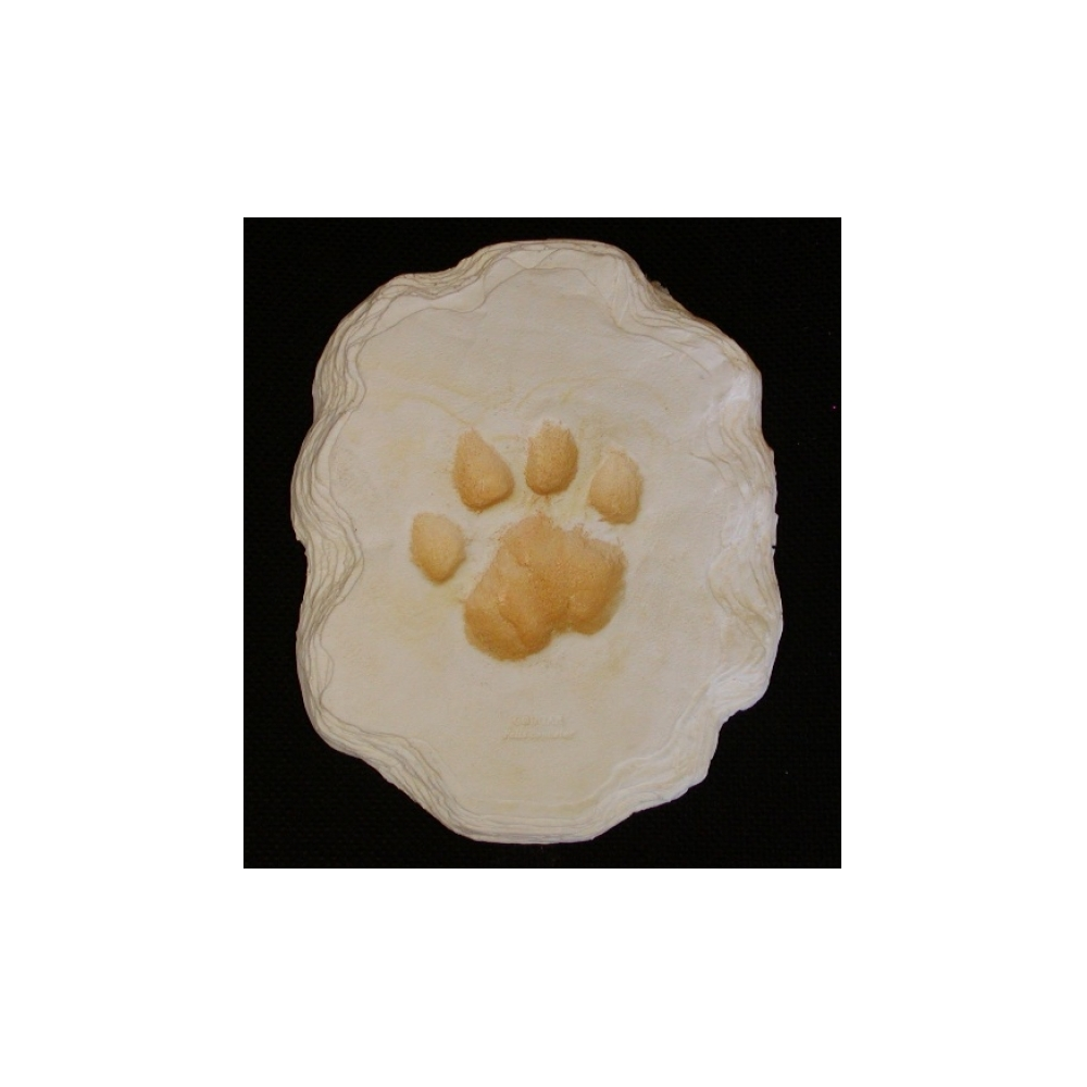Cougar (Mountain Lion) Track Plaque