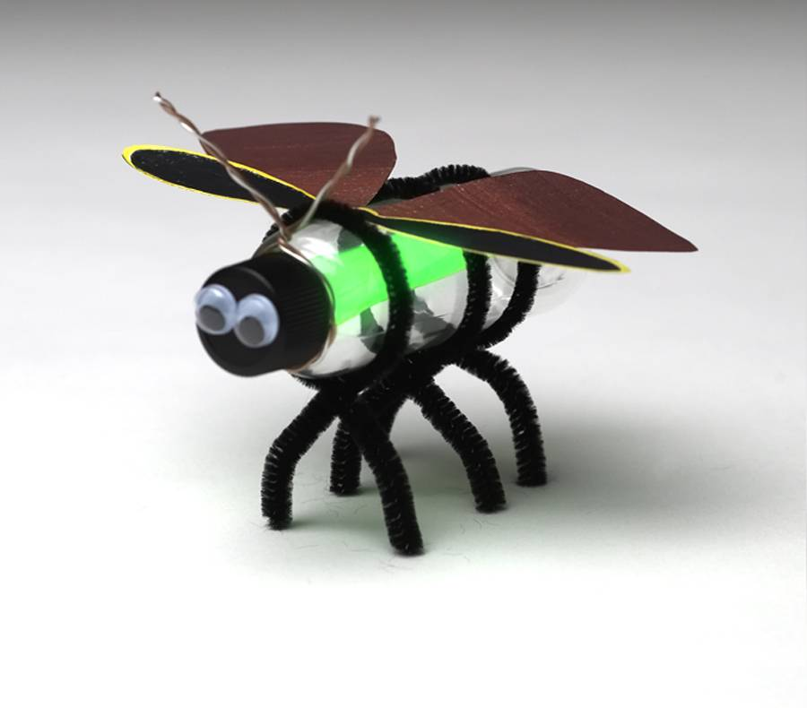 Insect Craft Projects Activities For Teaching Kids About Insects