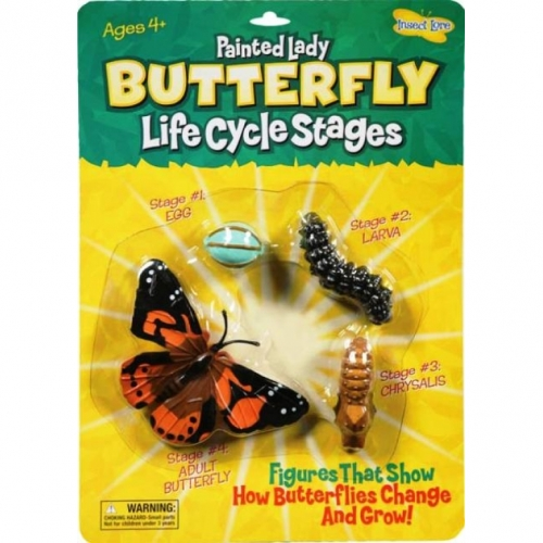 Painted Lady Butterfly Life Cycle Stage Figures: Butterfly