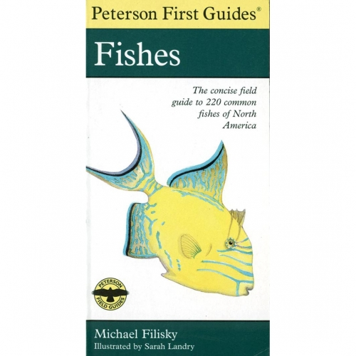 Field Guides: Fishes First Guide