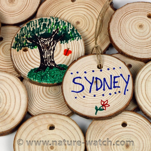 Tree Rings - Tree Cookies - Tree-Mendous Activity Kit