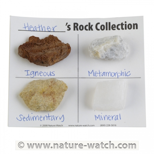 Rock-O-Rama Activity Kit