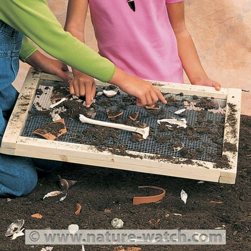 Archaeology Adventure Activity Kit