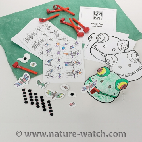 Froggy Face Activity Kit