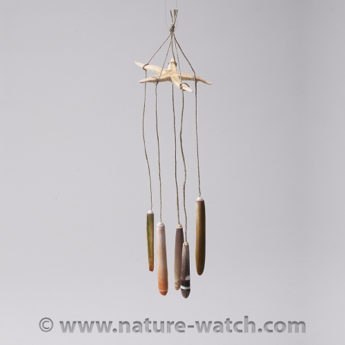 Tide Pool Wind Chime Activity Kit