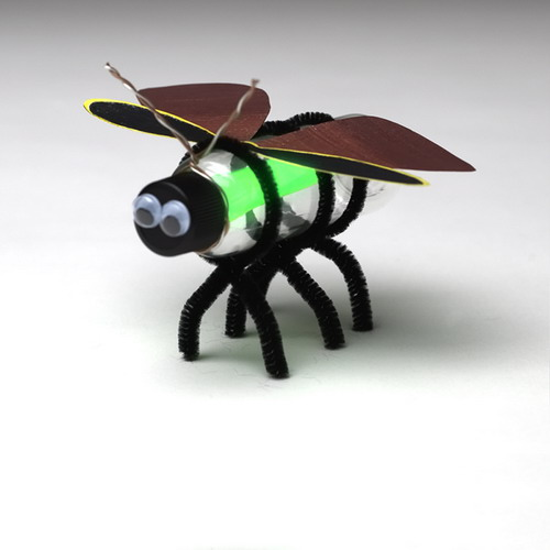 Incredible Insects Activity Kit