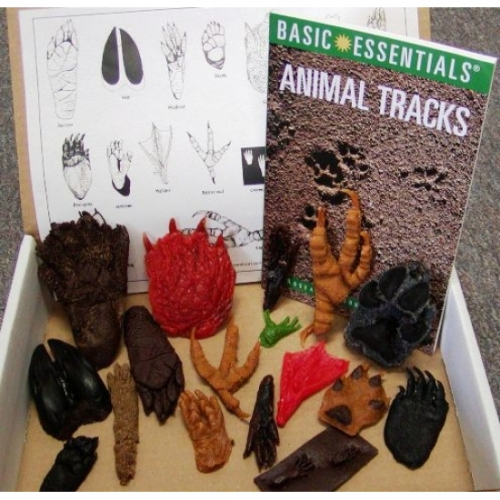 Replitracks� Animal Tracks (18 Tracks)