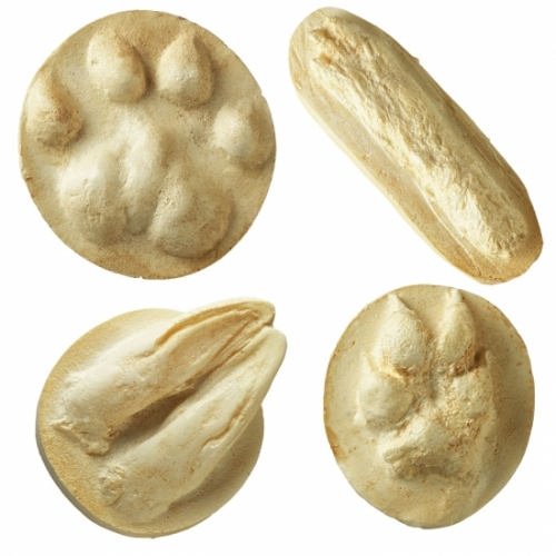 Animal Tracks (set of 16)