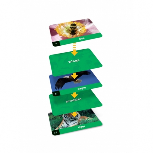 Animals Linkology Card Game