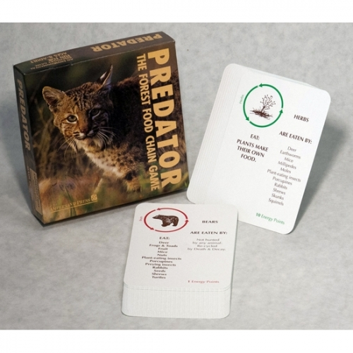 Predator: The Forest Food Chain Game