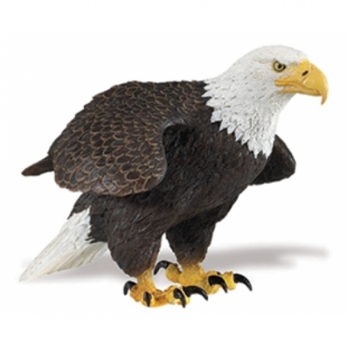 Bald Eagle Replica