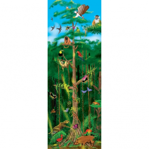 Rainforest Layers Puzzle