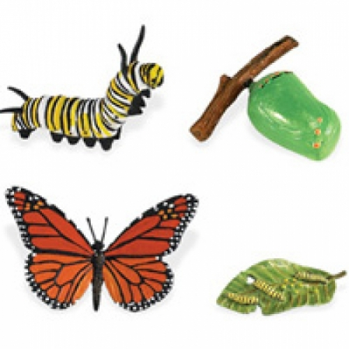 Monarch Butterfly Life Cycle Stage Figures