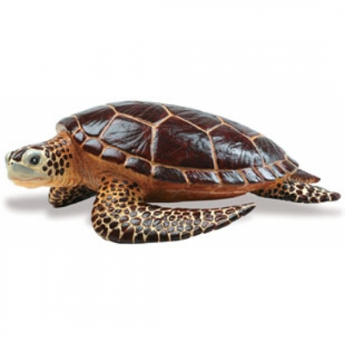 Sea Turtle Replica