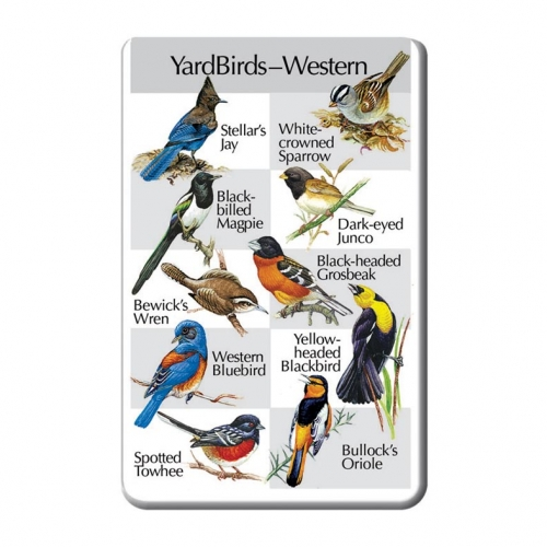 Western Yardbirds SongCard