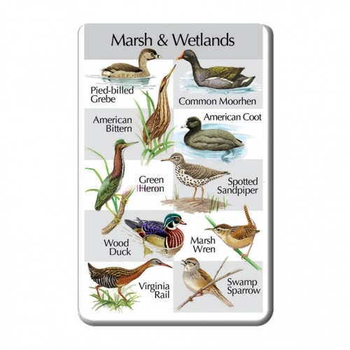 Birds of the Marsh and Wetlands SongCard