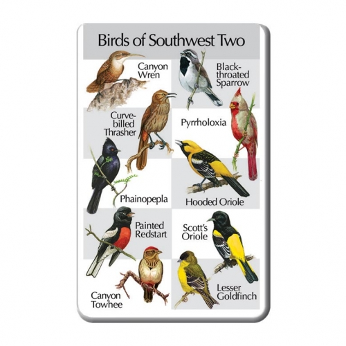Birds of the Southwest Two SongCard