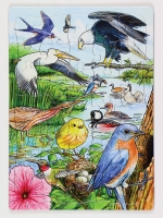 North American Birds Puzzle