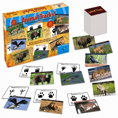 Animal Tracks Elementary Age Matching Game