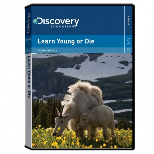 Learn Young or Die: North American Animals DVD