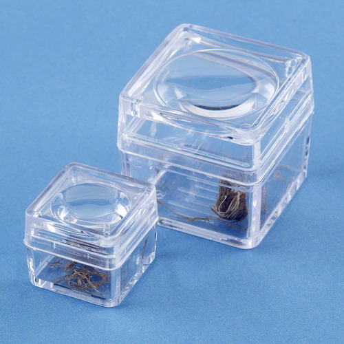 Bug Box with Magnifying Lid