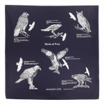 Birds of Prey Bandanna