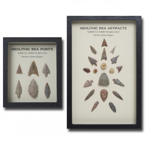 Neolithic Era Displays