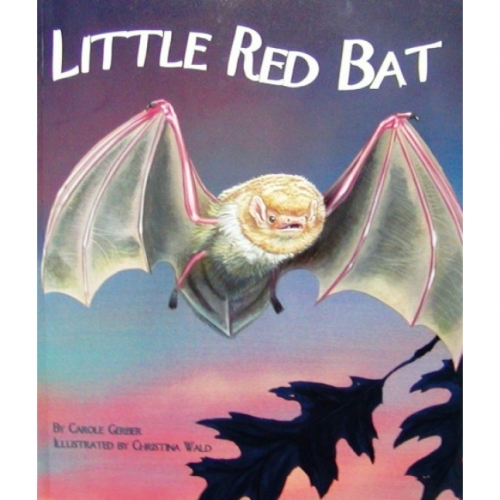 Little Red Bat Book