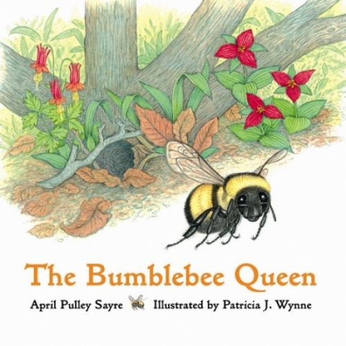 The Bumblebee Queen Book