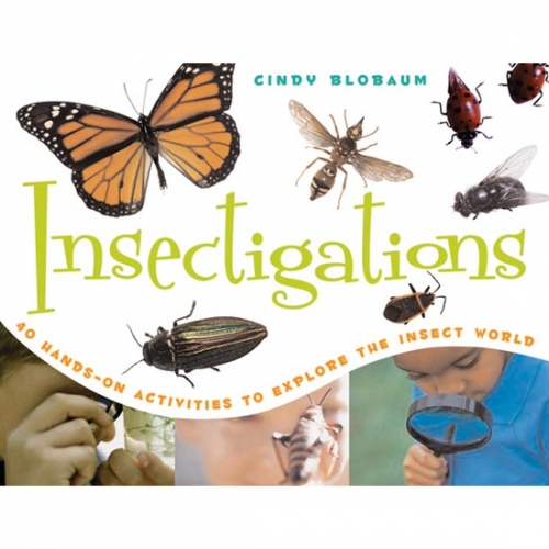 Insectigations Book