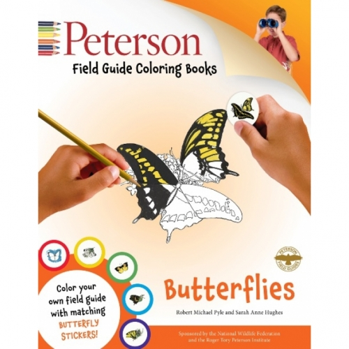 Butterflies Field Guide Coloring Book
