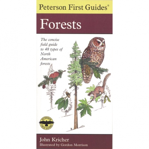 Forests First Guide