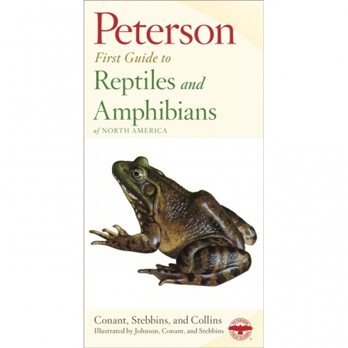 Reptiles & Amphibians First Guide