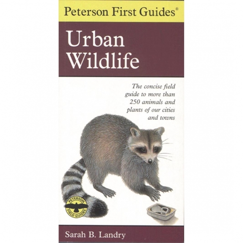 Urban Wildlife First Guide