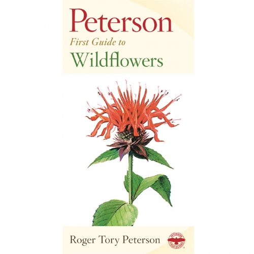 Wildflowers First Guide
