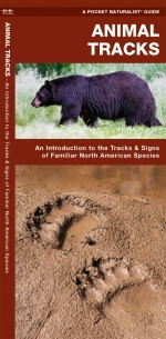 Animal Track Pocket Naturalist Guide