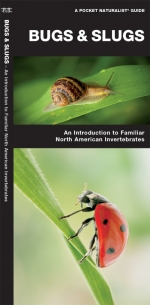 Bugs & Slugs Pocket Naturalist Guide