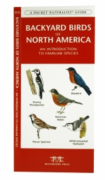 Backyard Birds of North America Pocket Naturalist Guide