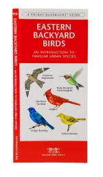 Eastern Backyard Birds Pocket Naturalist Guide