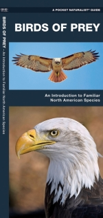 Birds of Prey Pocket Naturalist Guide