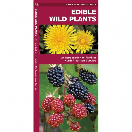 Edible Wild Plants Pocket Naturalist Guide