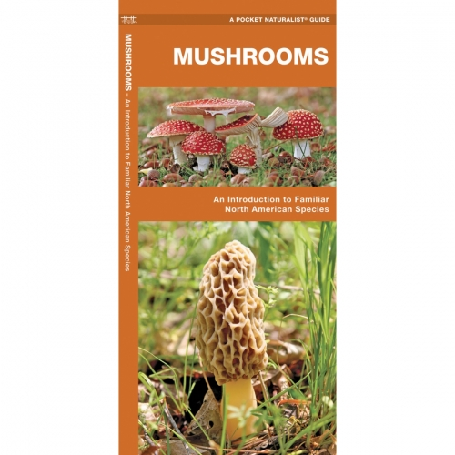 Mushrooms Pocket Naturalist Guide