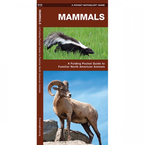 Mammals Pocket Naturalist Guide